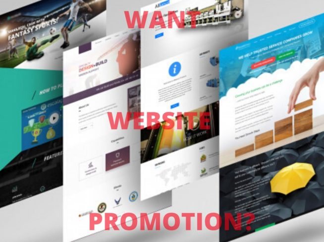 WANT WEBSITE PROMOTE